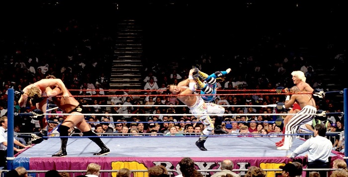 Royal-Rumble-1993.jpg