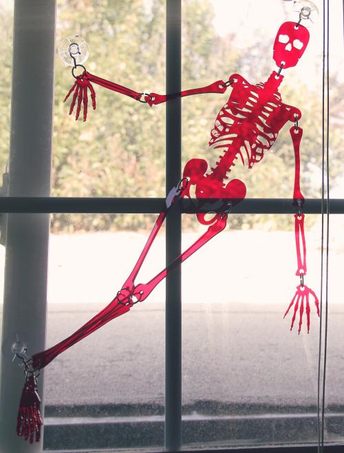 skeleton-red9.jpg