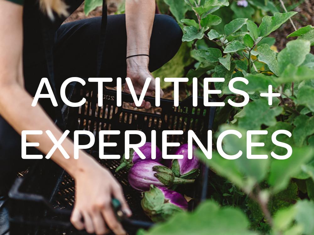 activities-experiences.jpg