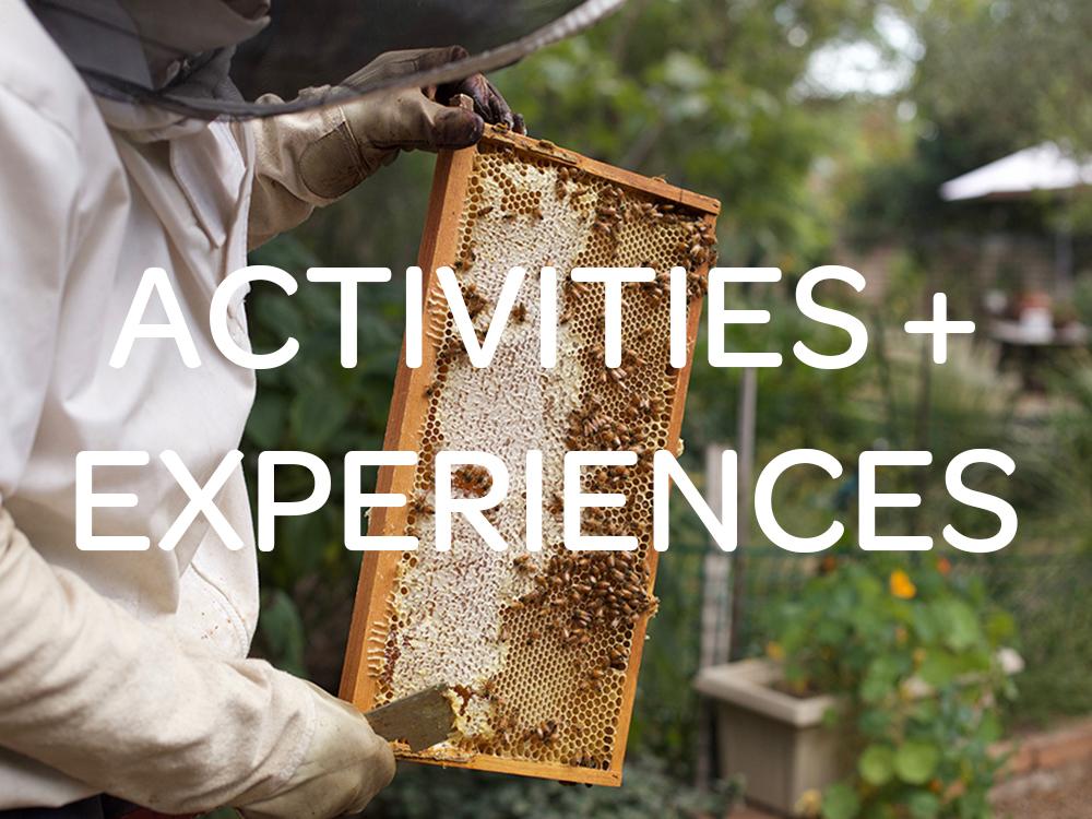 activities-experiences3.jpg