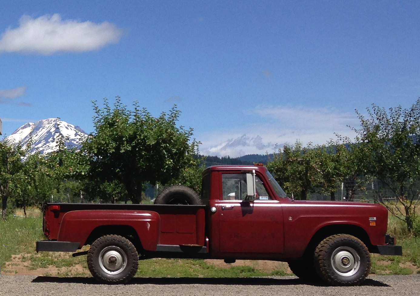 Joe's restored International, in service in the orchard at last.