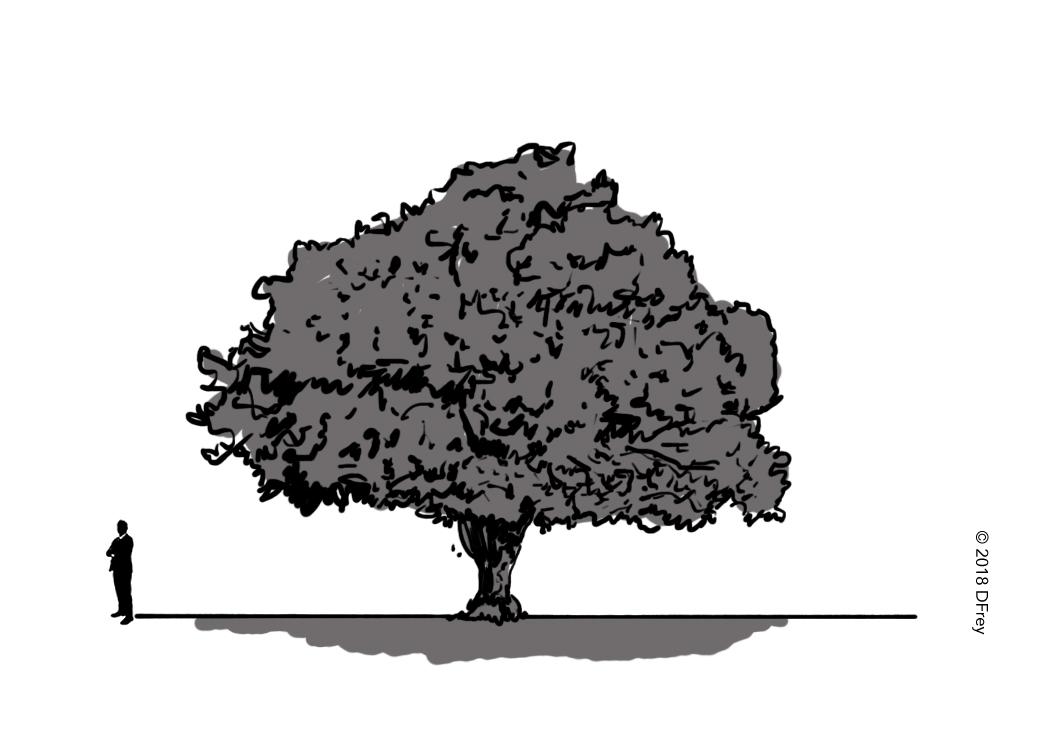 bb-cartoon-086.jpg