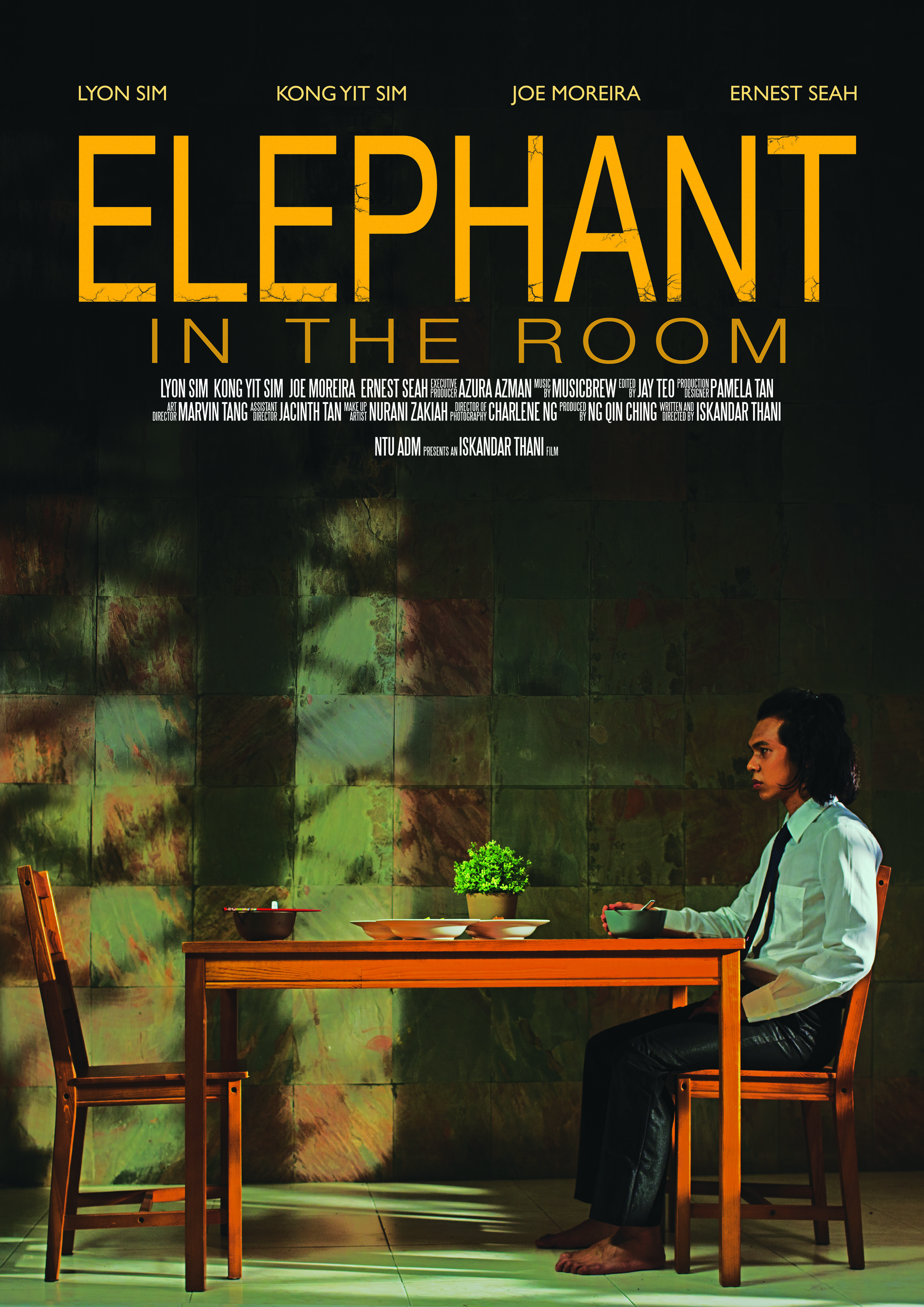 Elephant in the Room (2014)