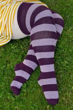 Sock Dreams - Thigh High Socks