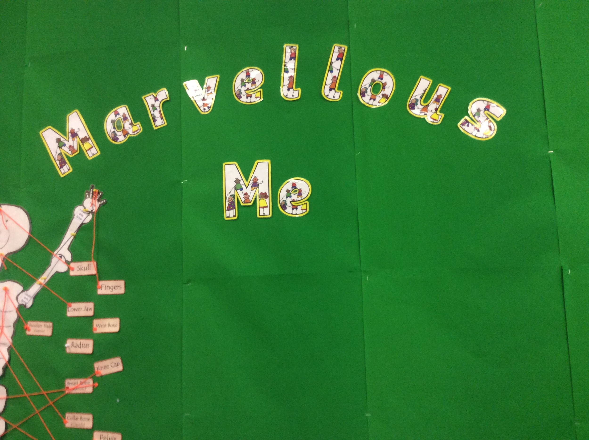 Our topic is 'Marvellous Me'. Our tables are named after bones of the body