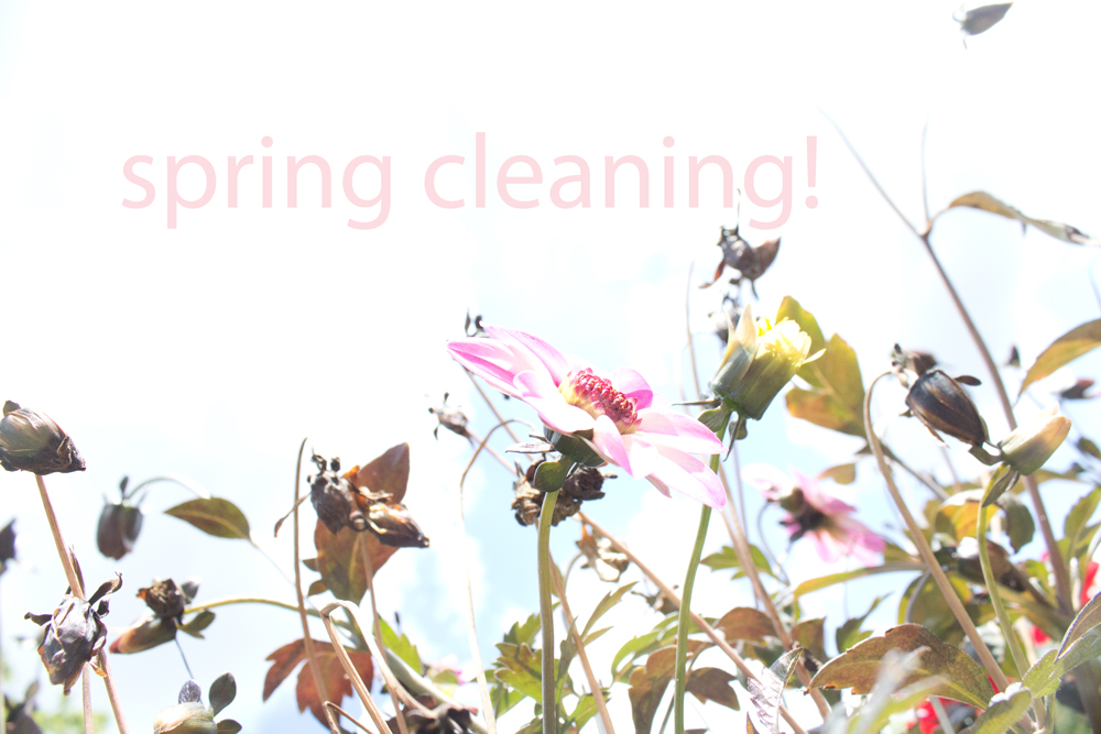 springcleaning. the biz school for creatives. kerstinpressler.com
