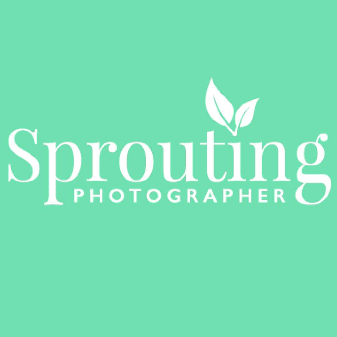 the sprouting photographer podcast