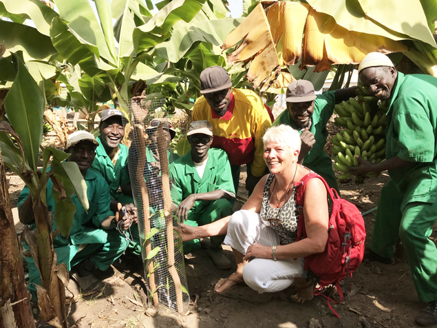 Anita Smith MBE and staff planting banana plants to provide food for patients in need at The Bansang Hospital in The Gambia.