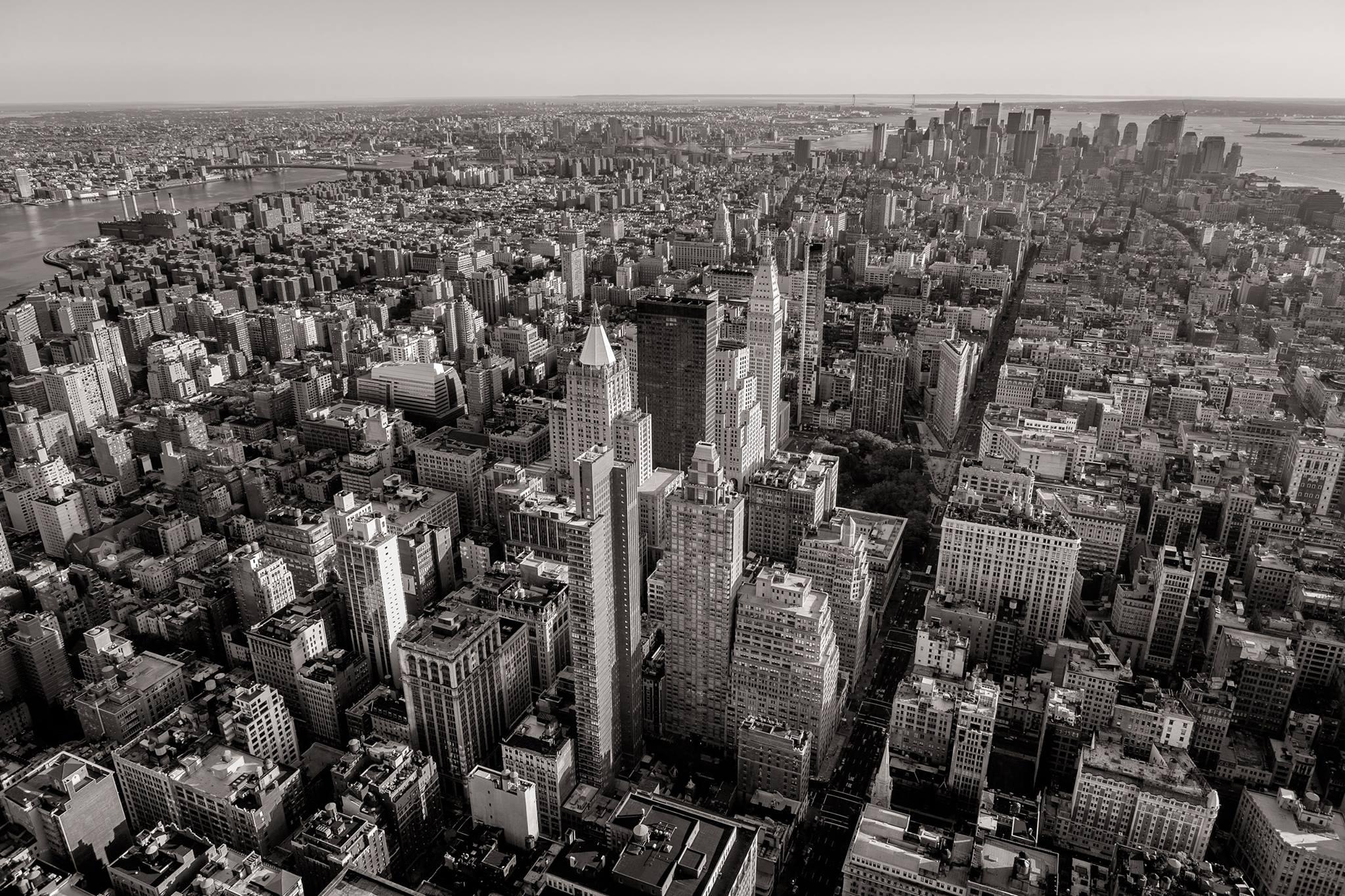 Lemonade-Cityscape.jpg