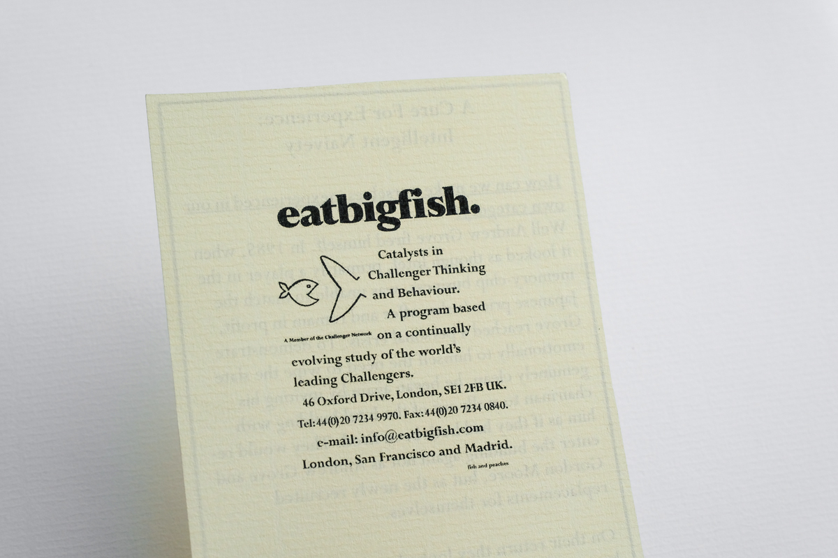 The first eatbigfish business card.