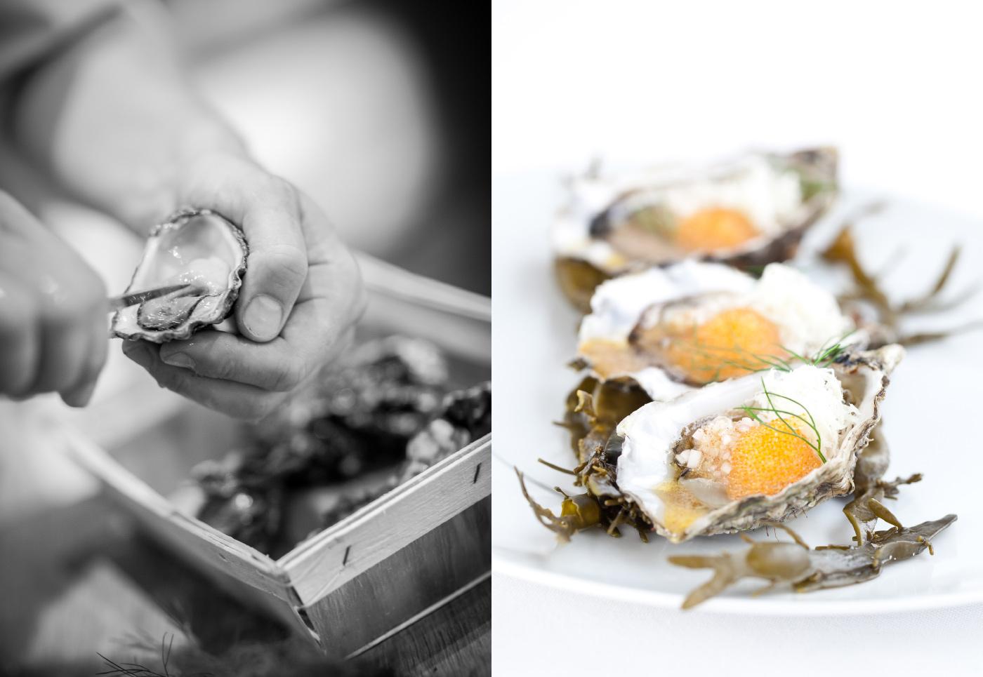 ELE-Gourmet_Oysters.jpg