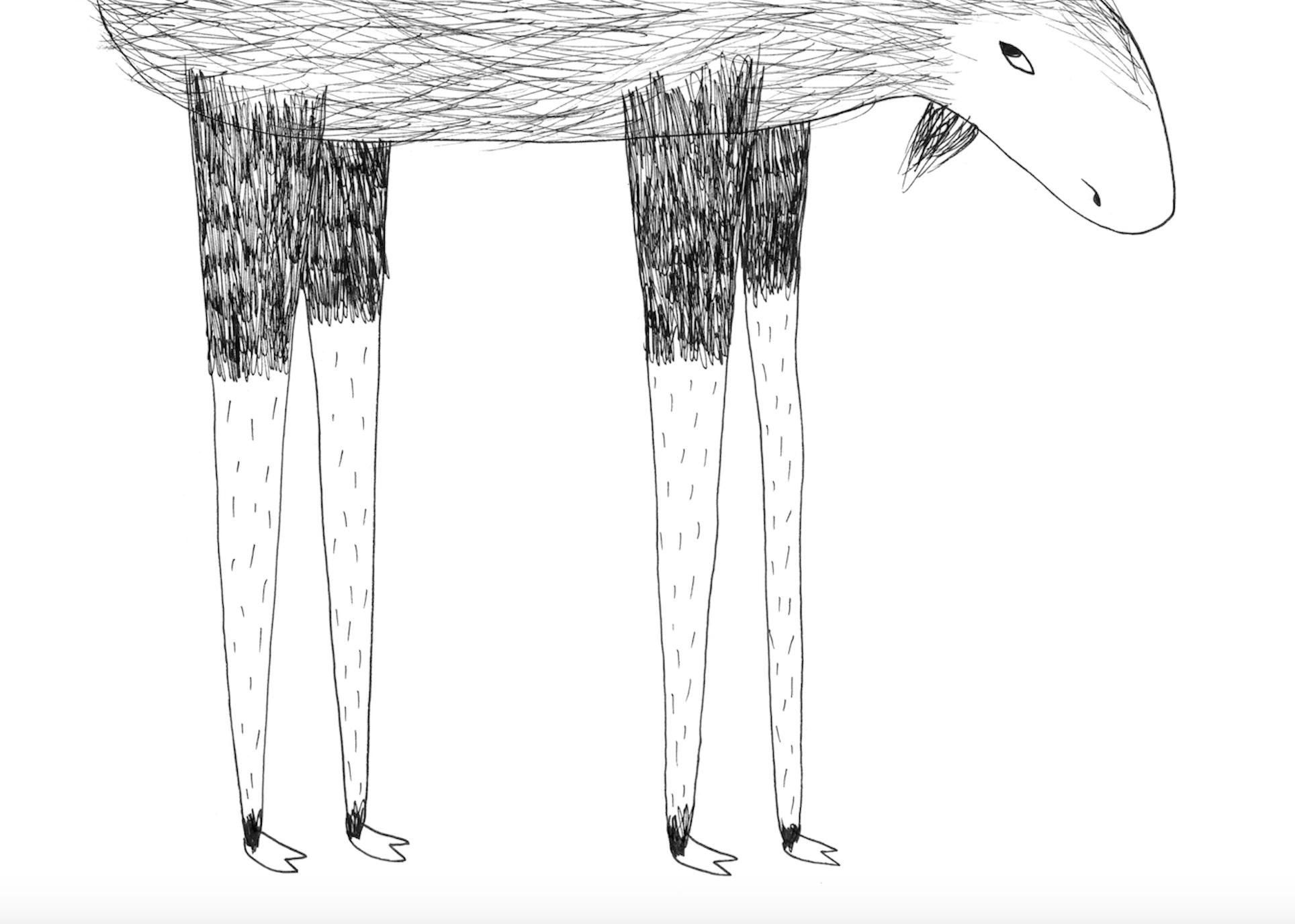 Copy of Questo è un alce?, Andrea Antinori, Corraini edizioni, 2015