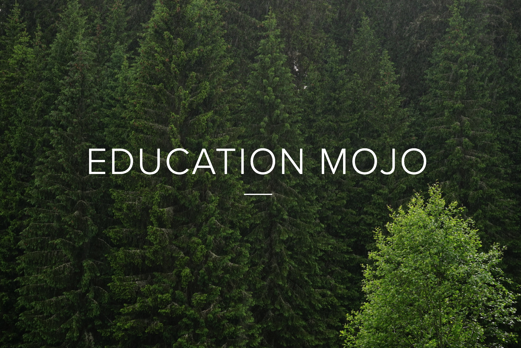 education mojo la foresta