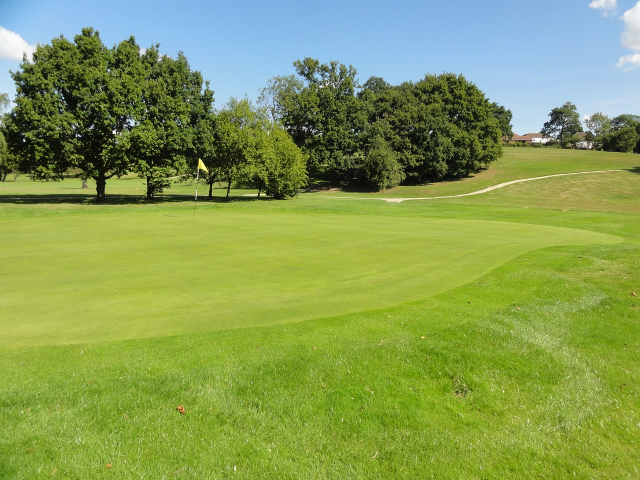 The 10th green is looking very healthy following drainage installation