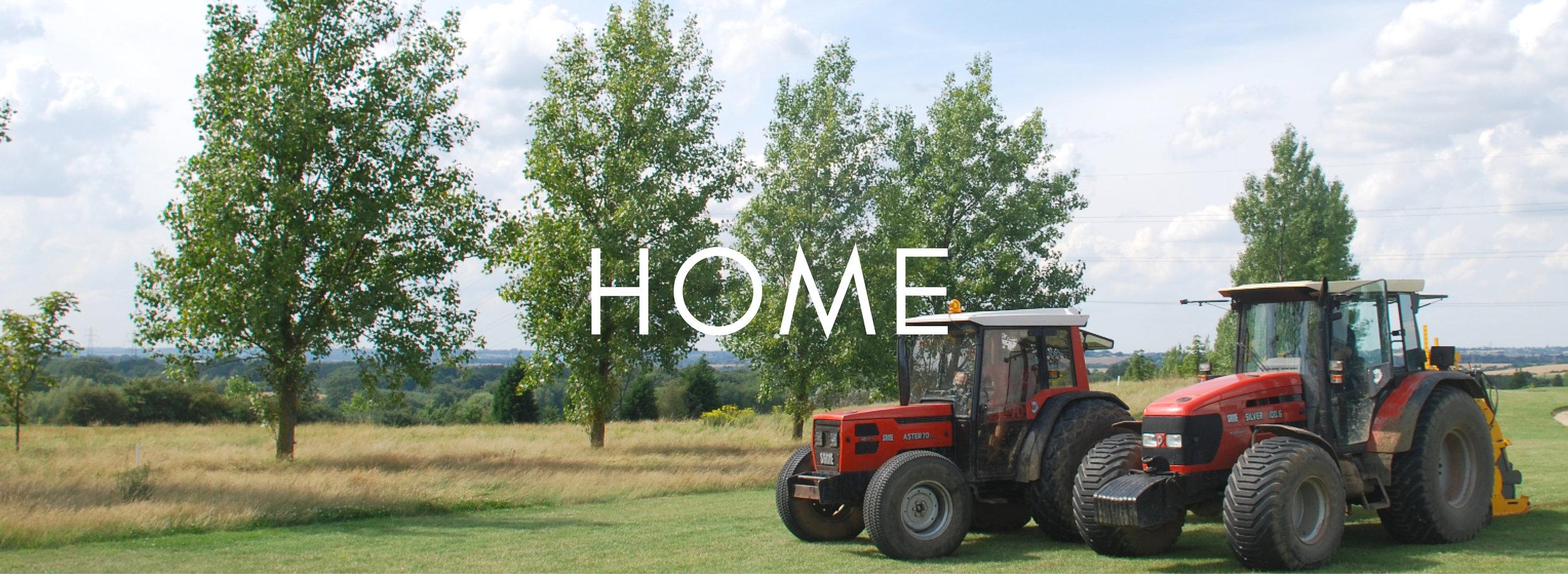 HOME BUTTON 2.jpg