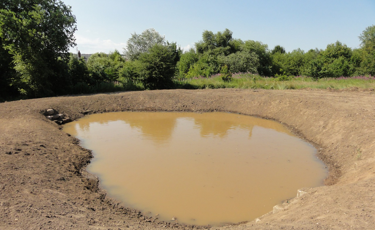 The new pond provides ecological enhancement to the site. It is fed solely from water collected by the youth pitch's Turfdry Drainage System.