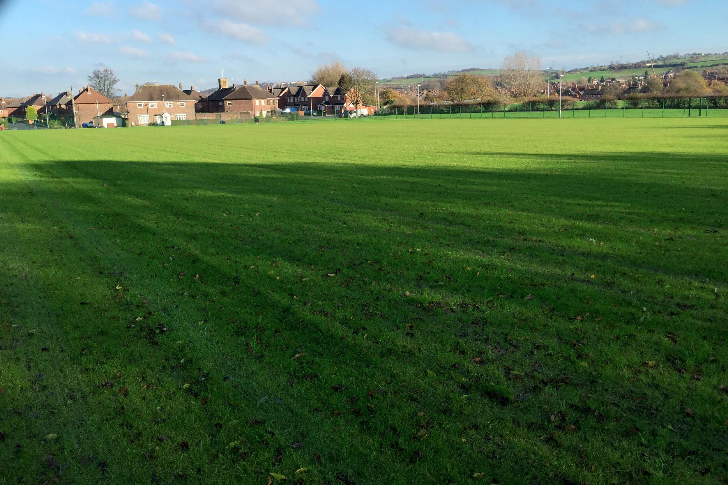 Senior pitch after first cut (December 2014).