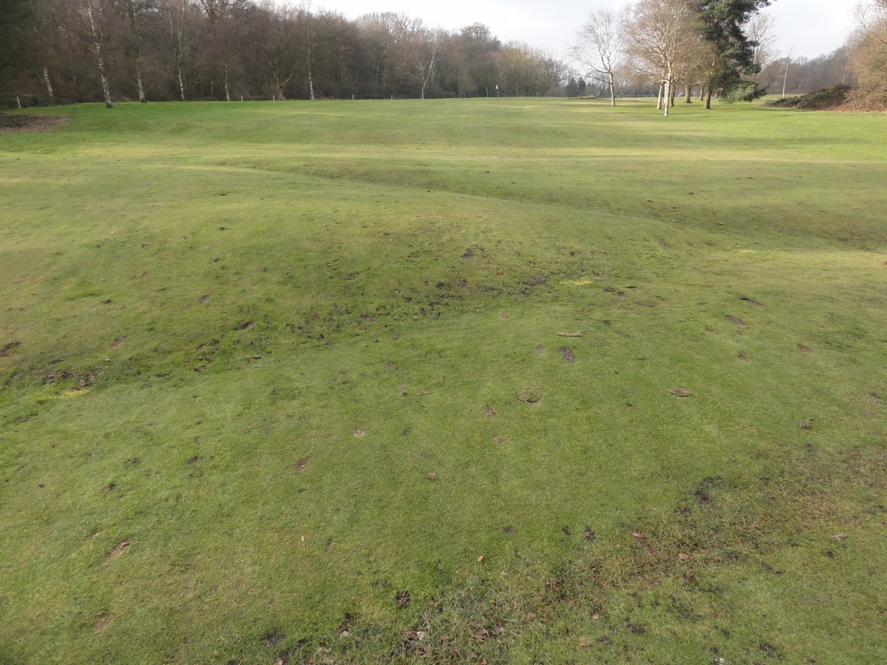 The area in question is riddled with significant undulations, making natural drainage very difficult.