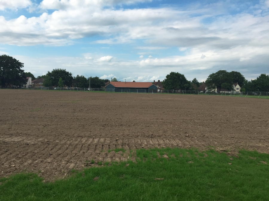 The pitches prior to cultivation & seeding