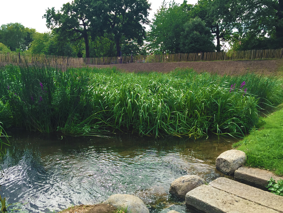The wetlands add both aesthetic and ecological value to the park, as part of Enfield Council's continued efforts to improve the Borough.