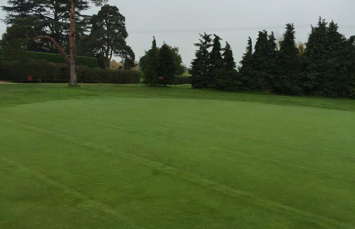 Strips of turf are re-laid and greens are back in play in 3-4 weeks.