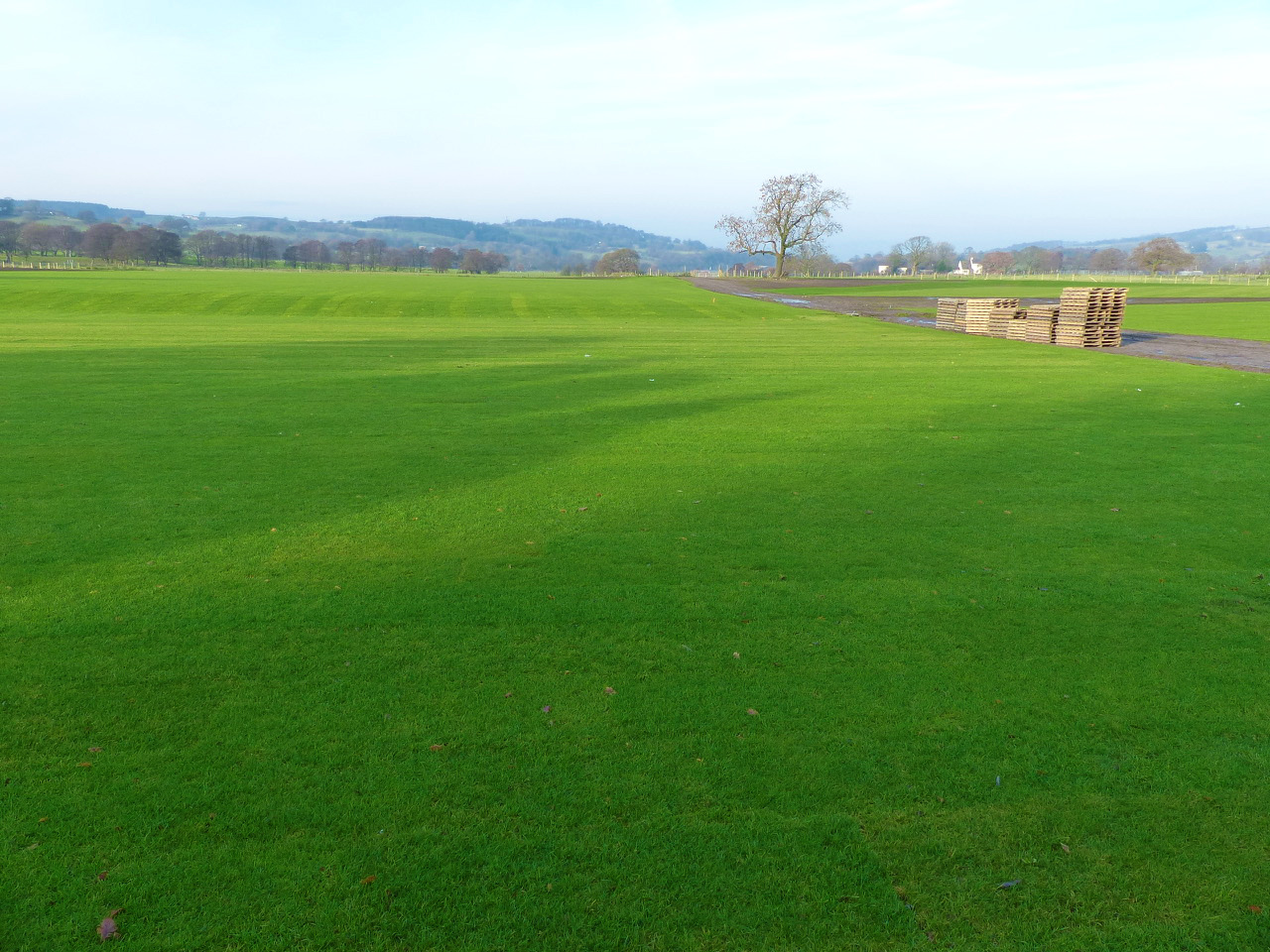 The pitch is developing well, with Turfdry implementing a maintenance programme until handover.