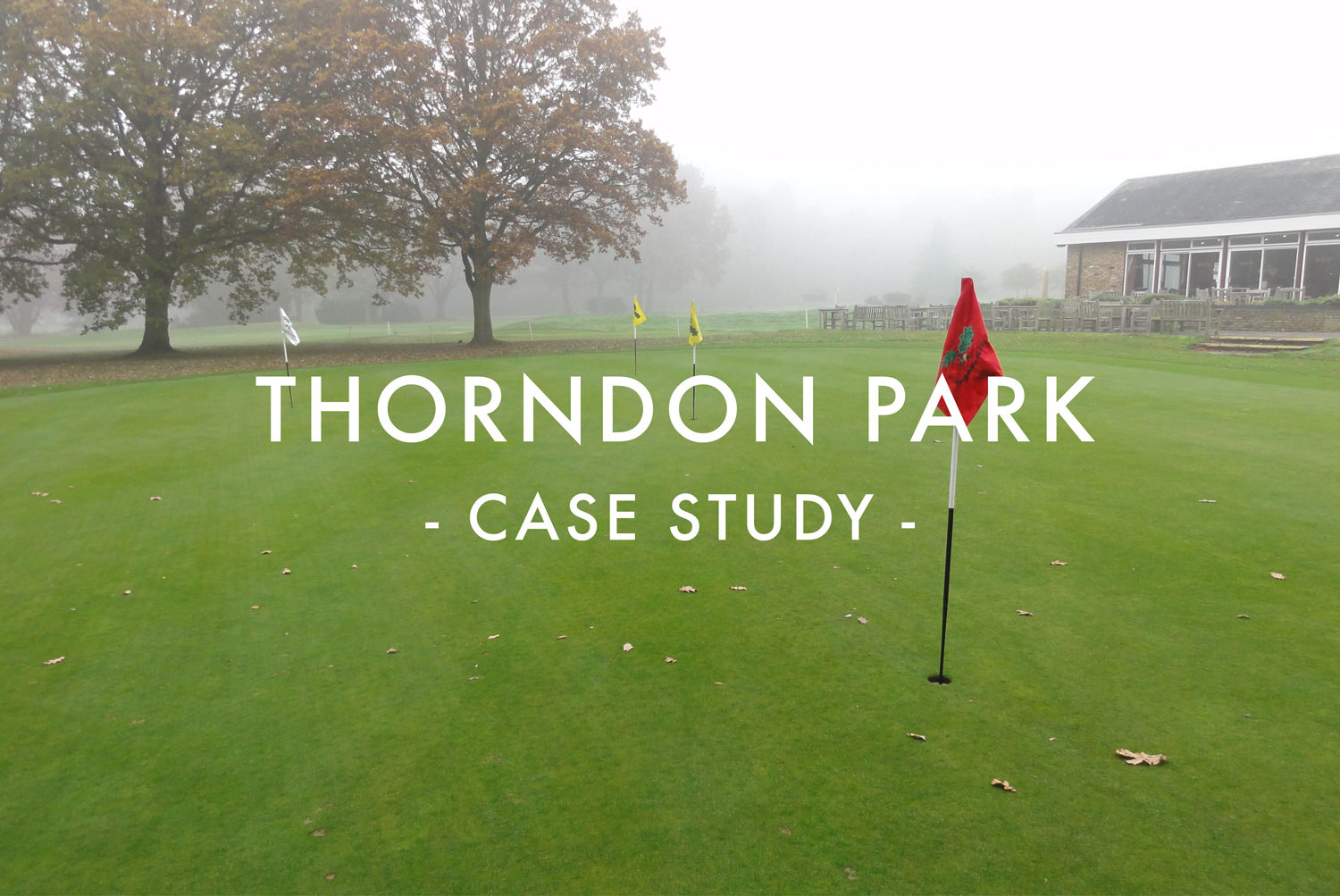 Thorndon Park - Case Study