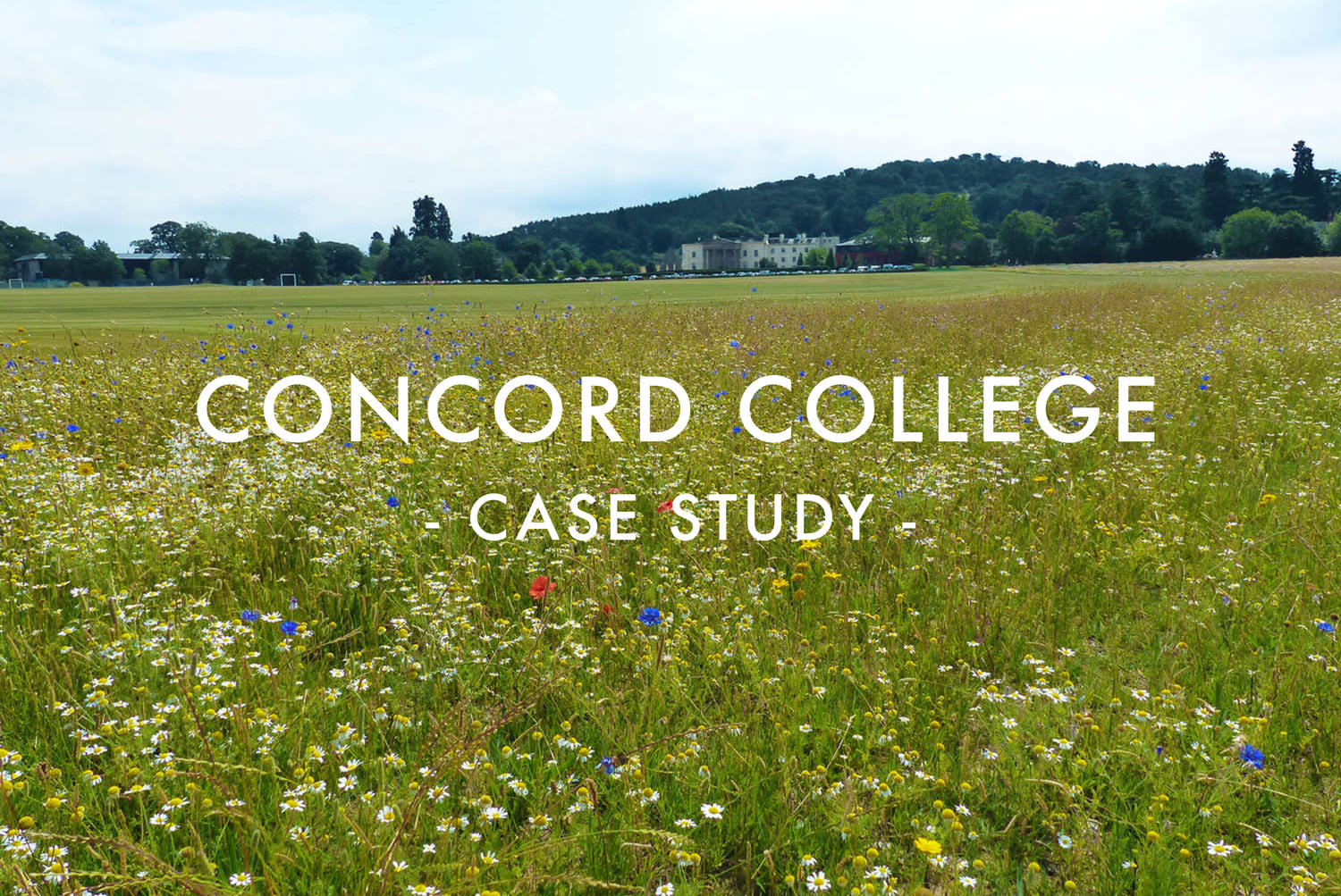 Concord College - Sports Pitch & Amenity Turf Design & Construction Case Study