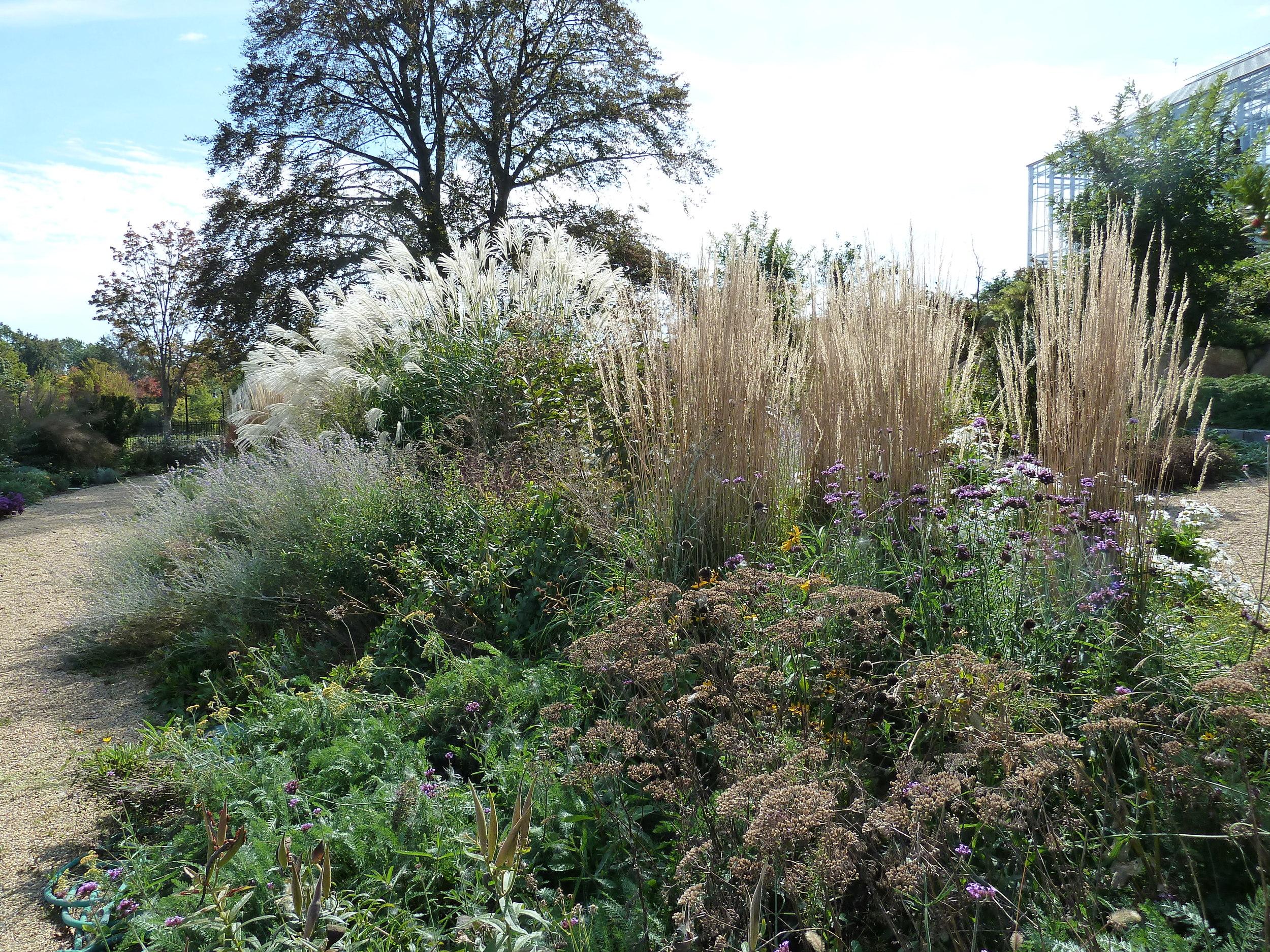 Roger Williams Park Botanical Center 6