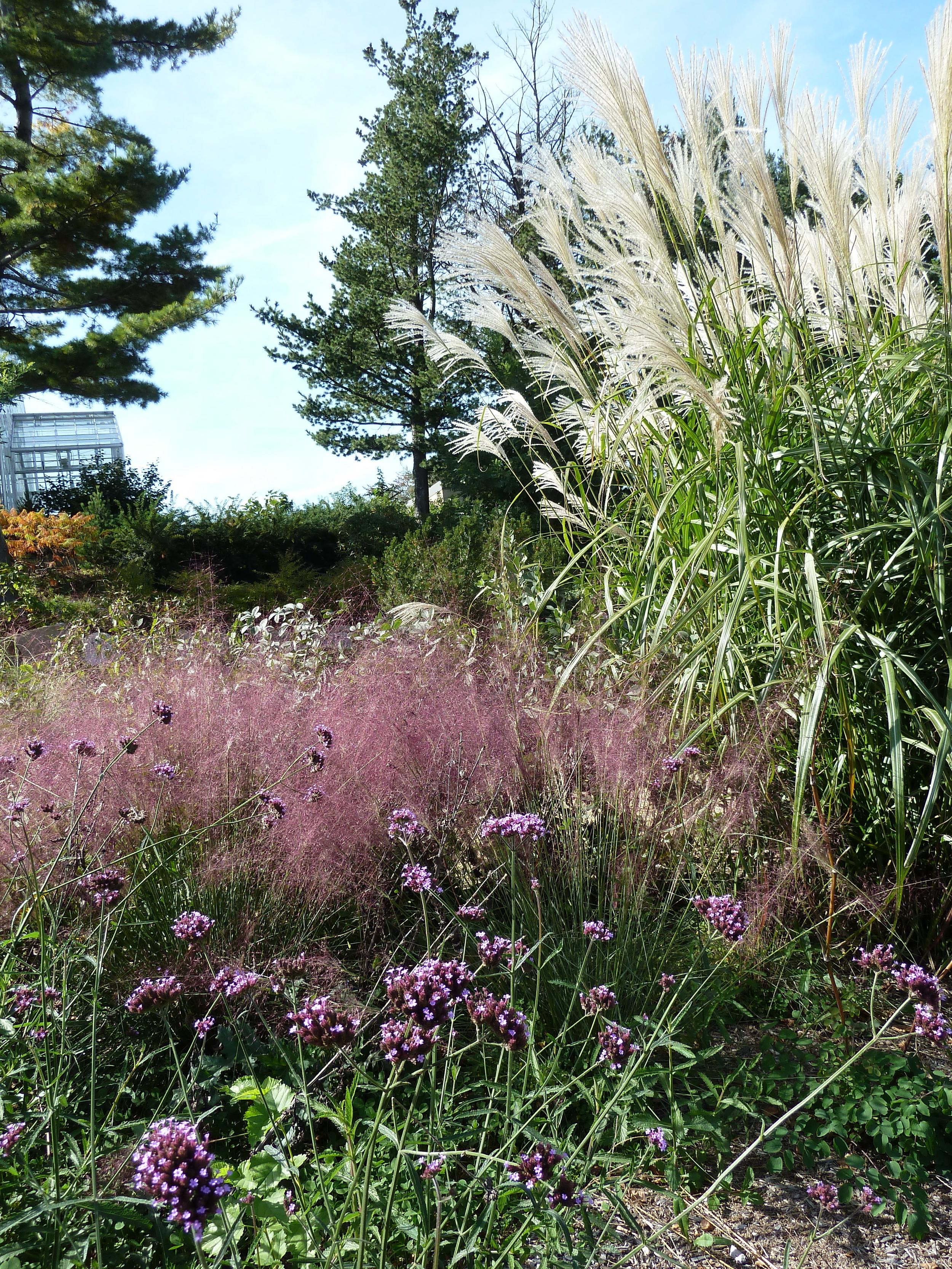 Roger Williams Park Botanical Center 5