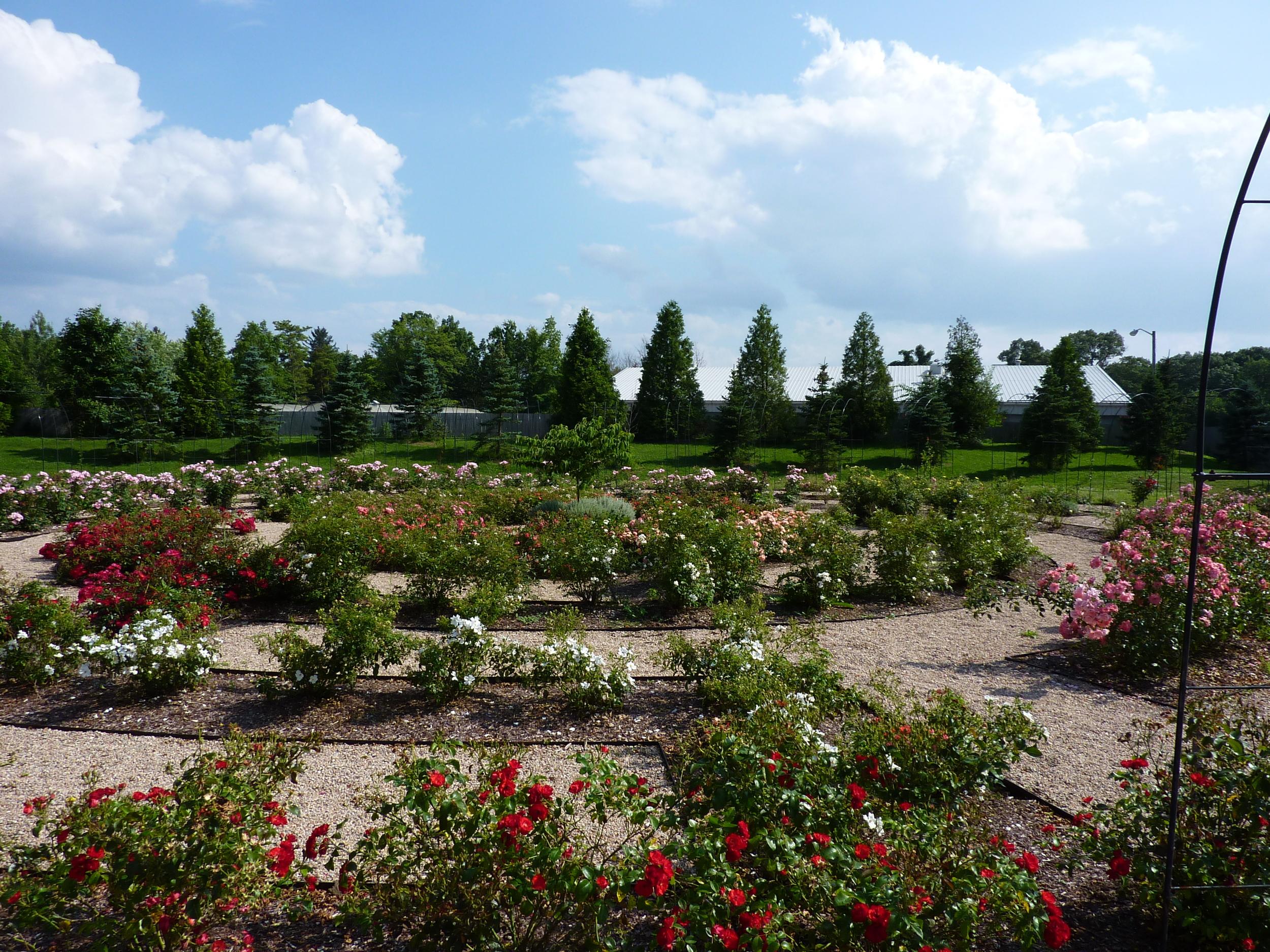 Roger Williams Park Botanical Center 7