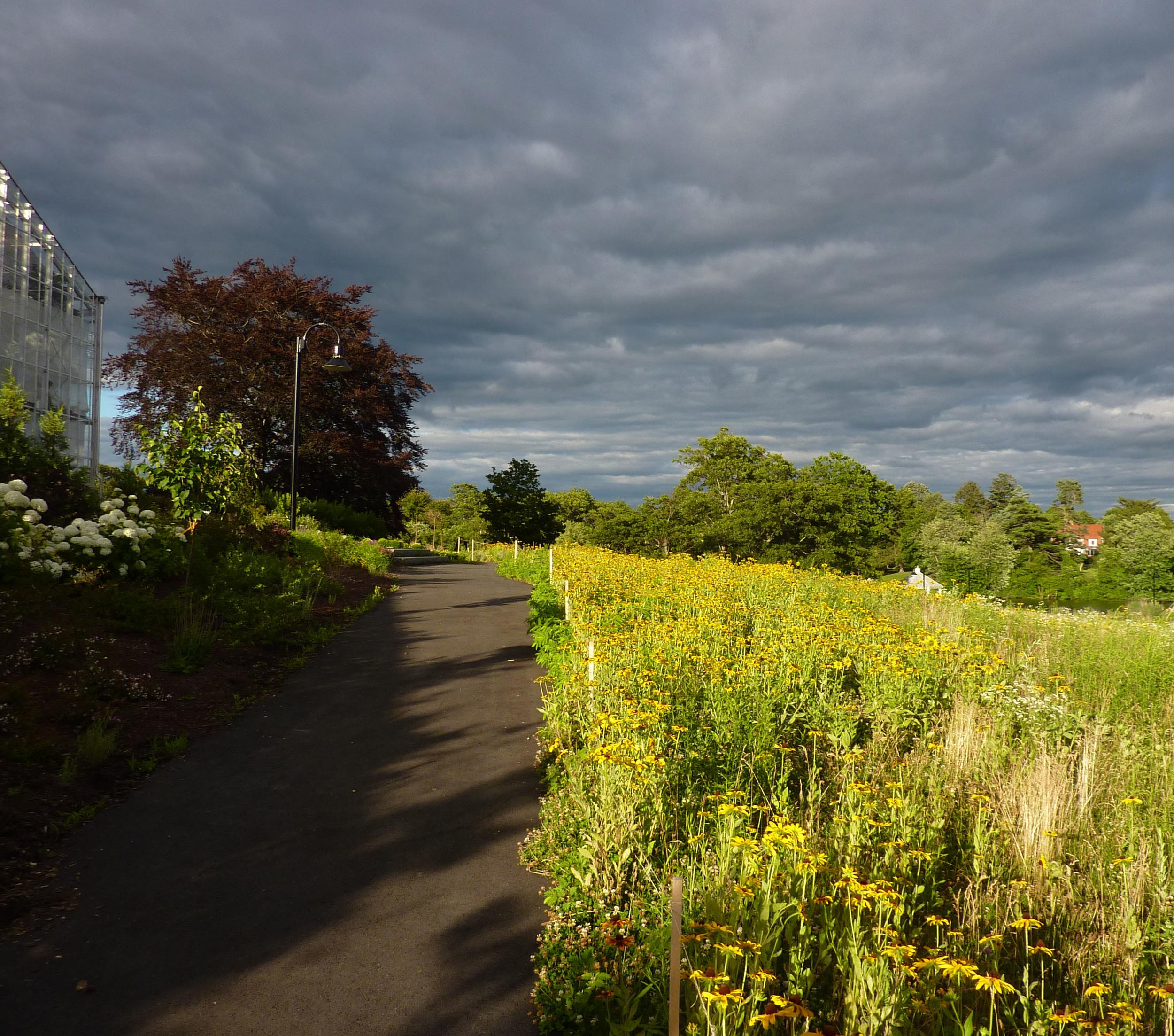 Roger Williams Park Botanical Center 9