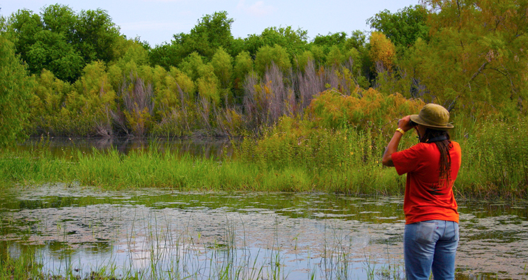 Wildlife Habitat in the Rio Grande Valley in South Texas. Photo courtesy of The Valley Land Fund