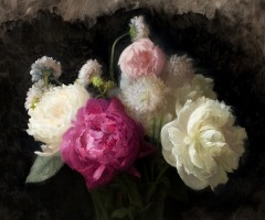 flowers-cropped-1-240x200.jpg