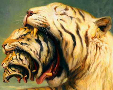 MARTIN WITTFOOTH -