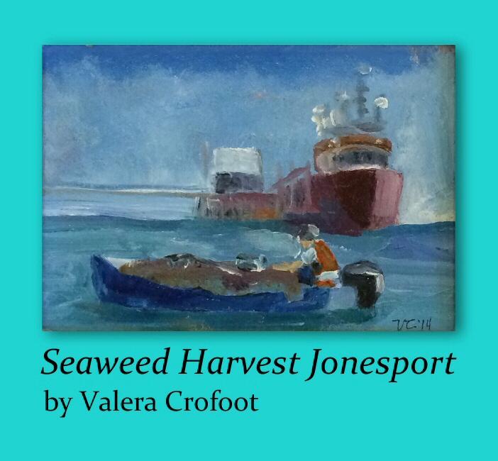 Valera-Crofoot-Seaweed-Harvest-Jonesport-4.jpg