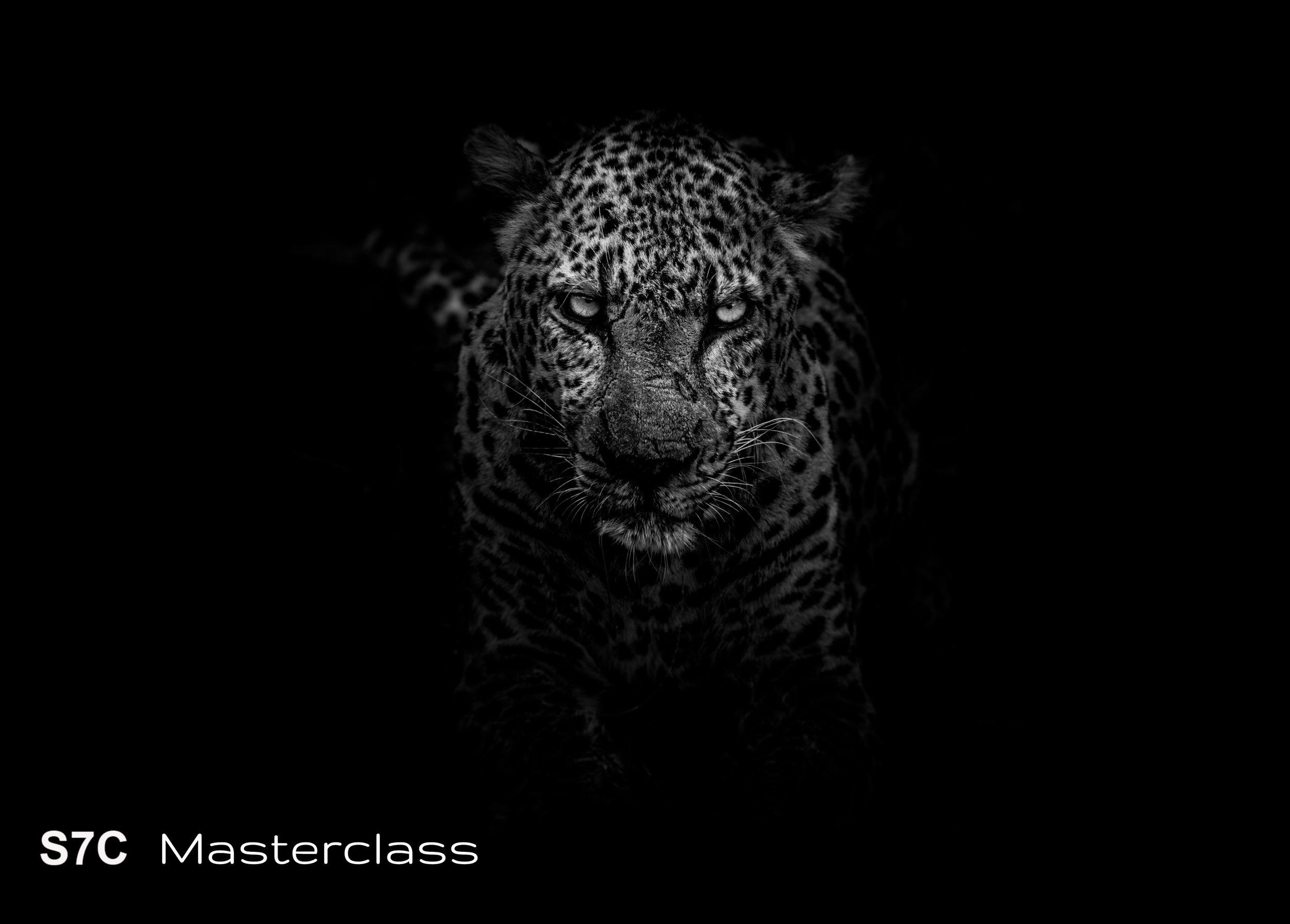 S7C Masterclass.jpg