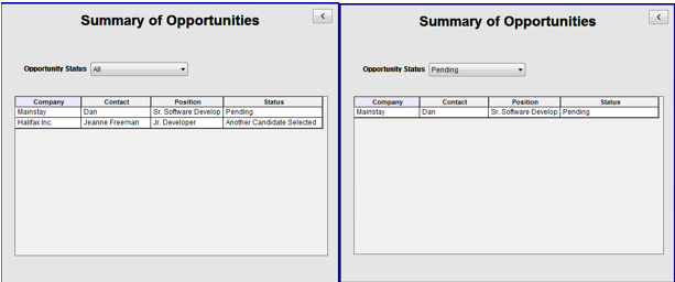 """Summary of Opportunities  – Table showing job opportunities being pursued with the ability to filter by the status of the opportunity -- e.g. """"All"""", """"Pending"""", """"Another Candidate Chosen"""".."""