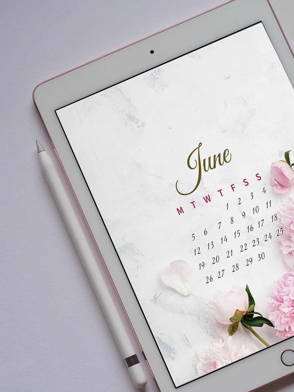 Download your  iPad Pro ,  iPad  or  iPad Mini  wallpaper calendar