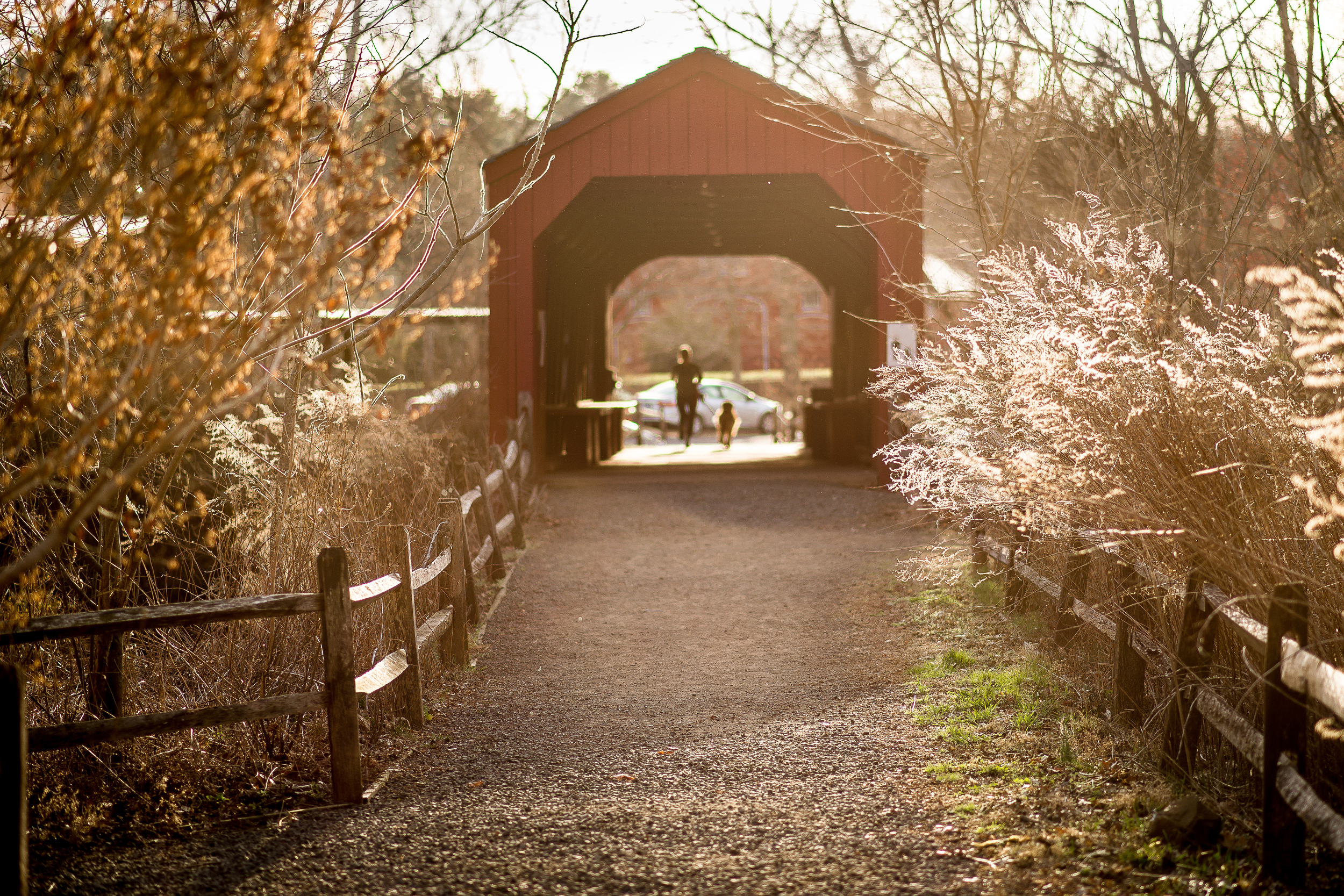 Covered Bridge Early Spring.jpg