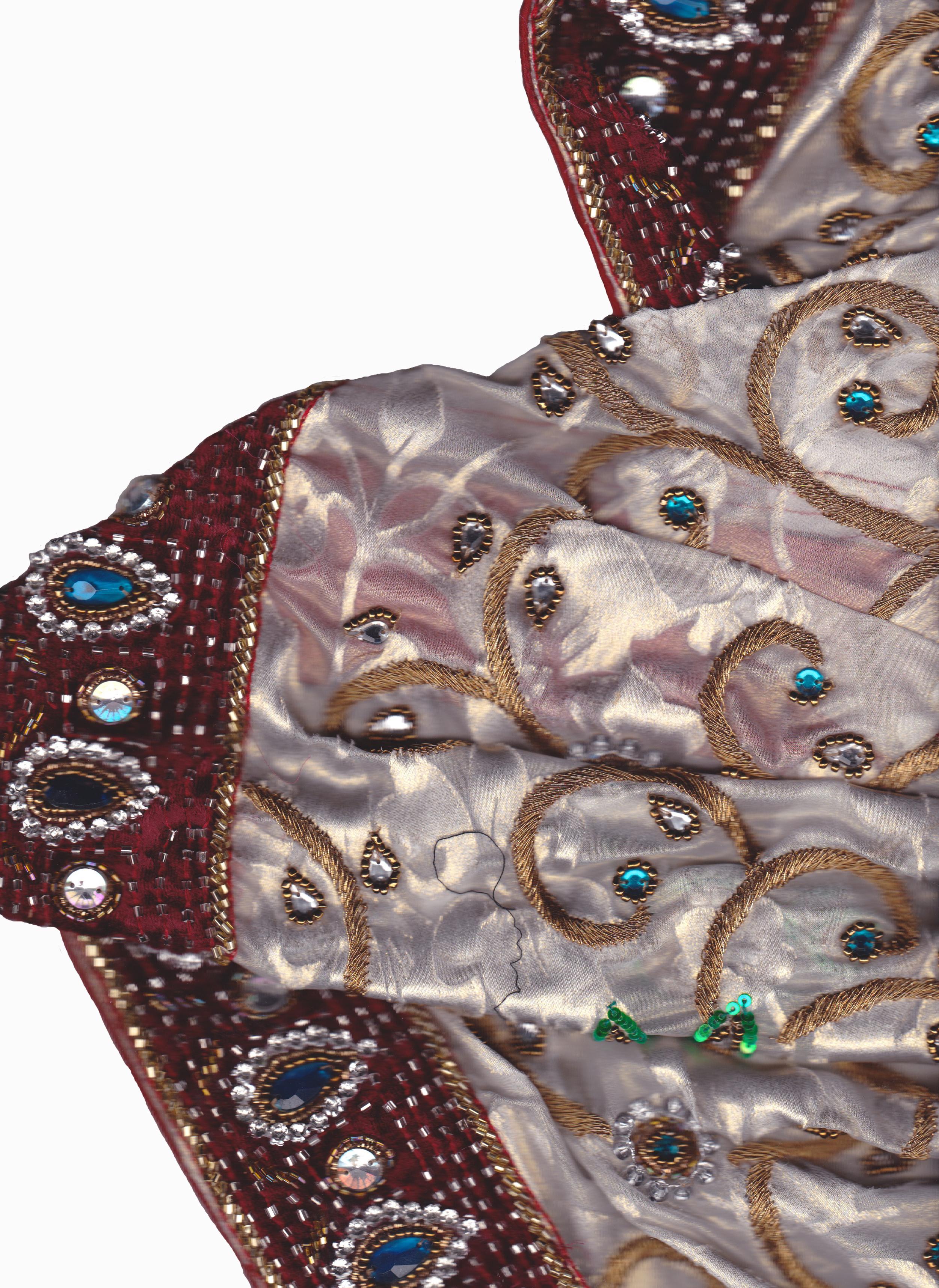 peacock sari border.jpg