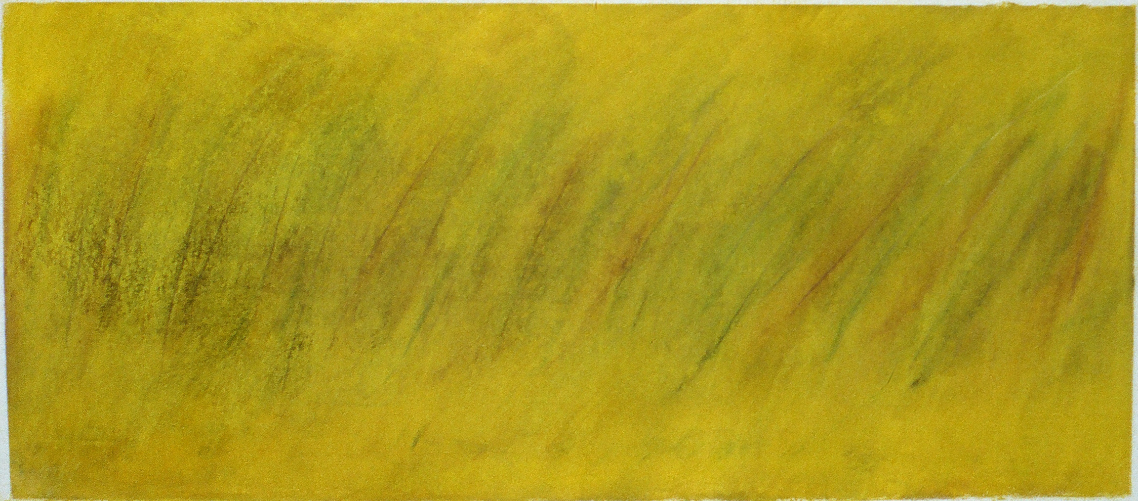"Yellow Field  10"" x 22.5"" Pastel on paper 2000"