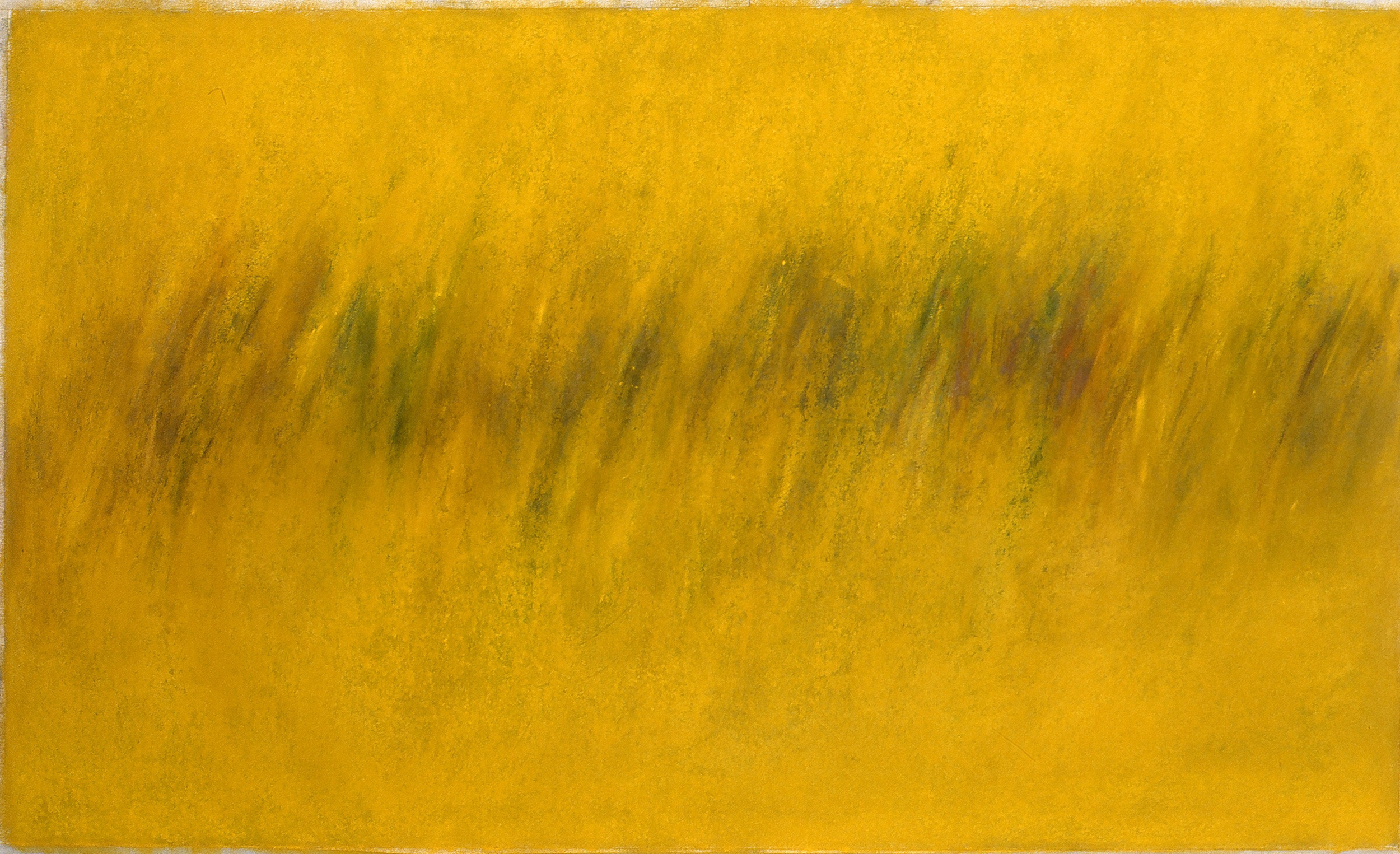 "Yellow Field 3*  22"" x 36"" Pastel on paper 2001   * Collection of Thompson Financial"