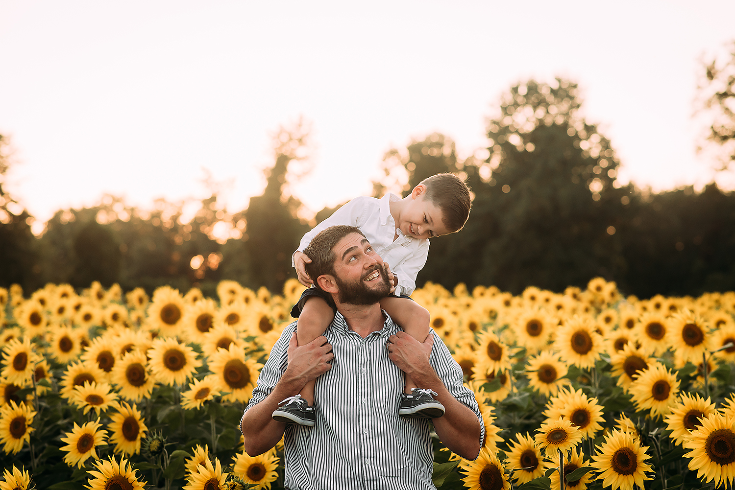 Baltimore Maryland Family Photography sunflowers The Sunflower Garden Jarretsville father and son Jessica Fenfert