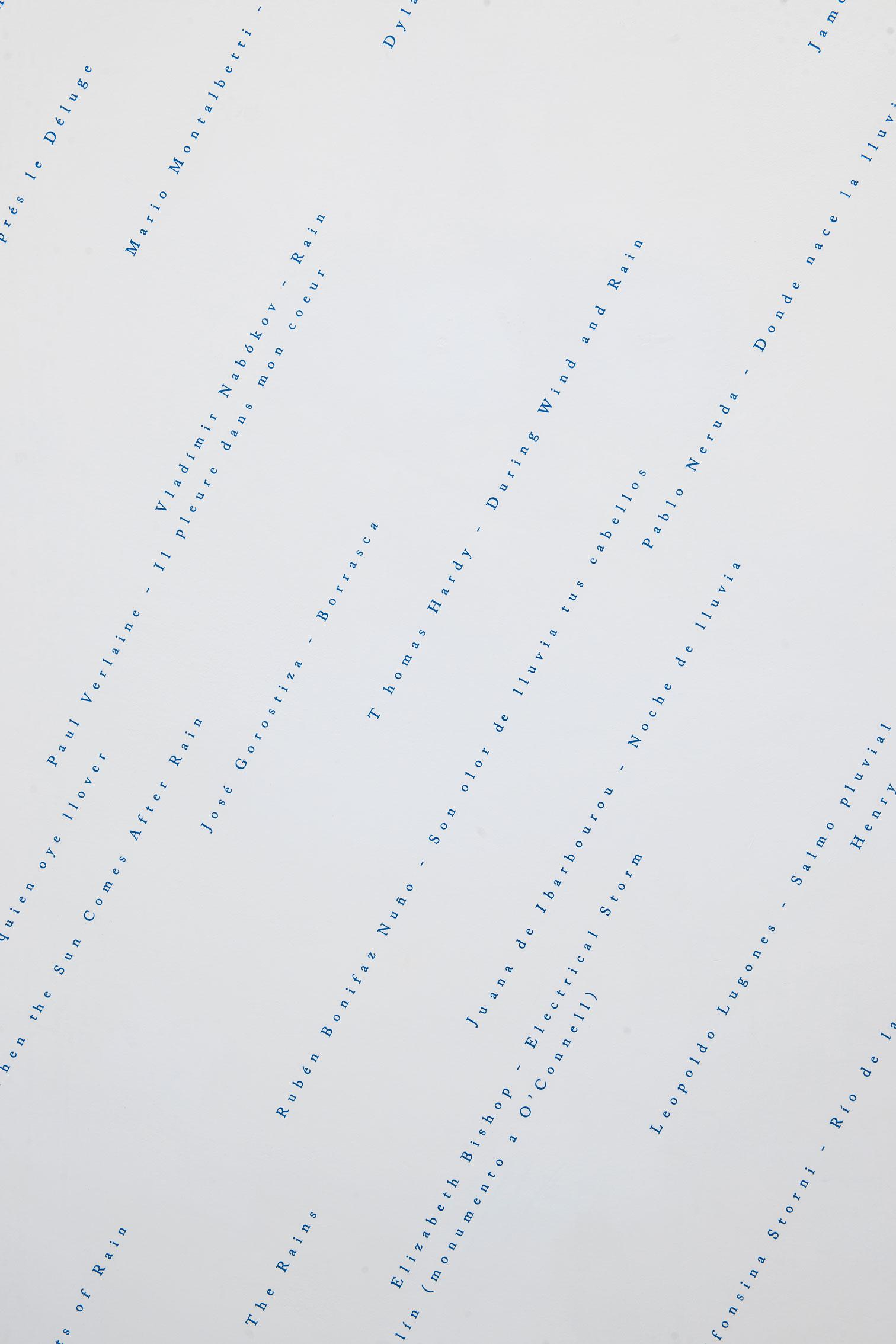 Está lloviendo (una antología)/It's Raining (An Anthology),   2017  Vinil / Vinyl  Dimensiones variables / Dimensions variable  Detalle / Detail
