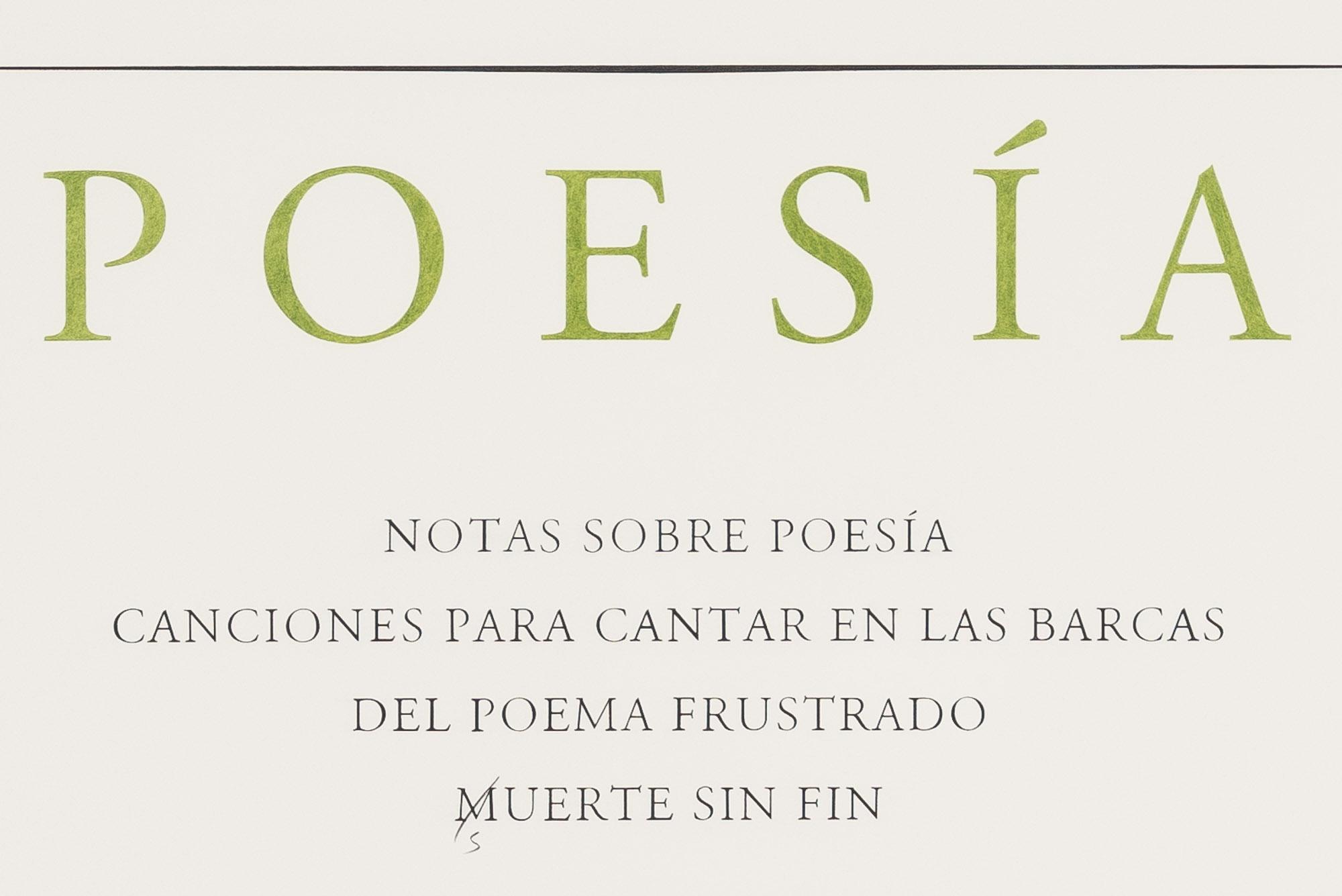 José Gorostiza. Poesía. 1939 – 2017 / José Gorostiza. Poetry. 1939 - 2017  , 2017  Lápiz y lápiz de color sobre papel de algodón / Pencil and colored pencil on cotton paper  150 x 100 cm  Detalle / Detail