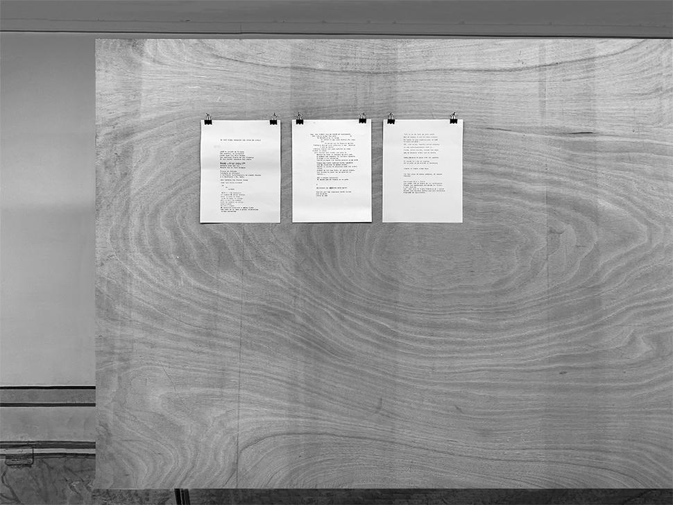 El gran poema inexacto del siglo XX (Cuba)   /  The Great Inexact Poem of the Twentieth-Century (Cuba),   2019  Acción, máquina de escribir, papel, tinta, libros de poesía Cubana del siglo XX de la Biblioteca Nacional de Cuba José Martí / Action, typewriter, paper, ink, books of the Twentieth-Century Cuban poetry section from the Biblioteca Nacional de Cuba José Martí  Medidas variables / Variable dimensions  *Una persona se dirige a la Biblioteca Nacional, toma un libro de la sección de Poesía cubana del siglo XX, memoriza un fragmento, camina hacia la Casa de la Poesía y lo escribe en la máquina de escribir situada en la sala de exhibición / A person arrives at the National Library, he takes a book from the 20th Century Cuban Poetry section, memorizes a fragment, walks towards the Poetry House and writes it on the typewriter machine.  Proceso / Process