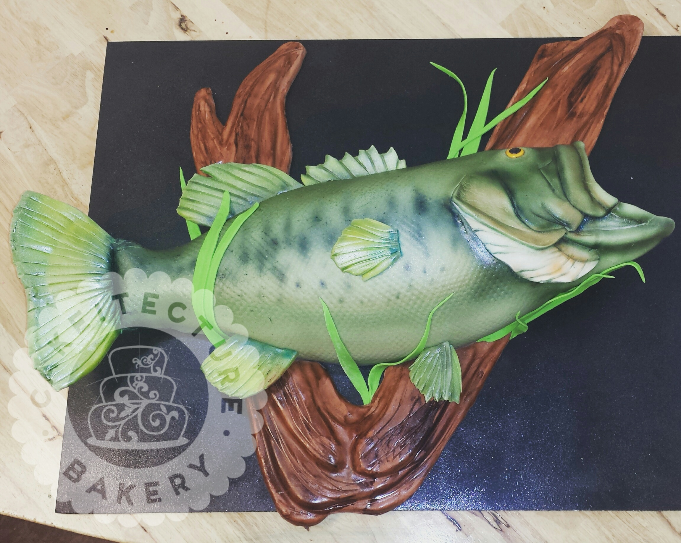 Mounted Bass Cakeitecture Bakery.jpg