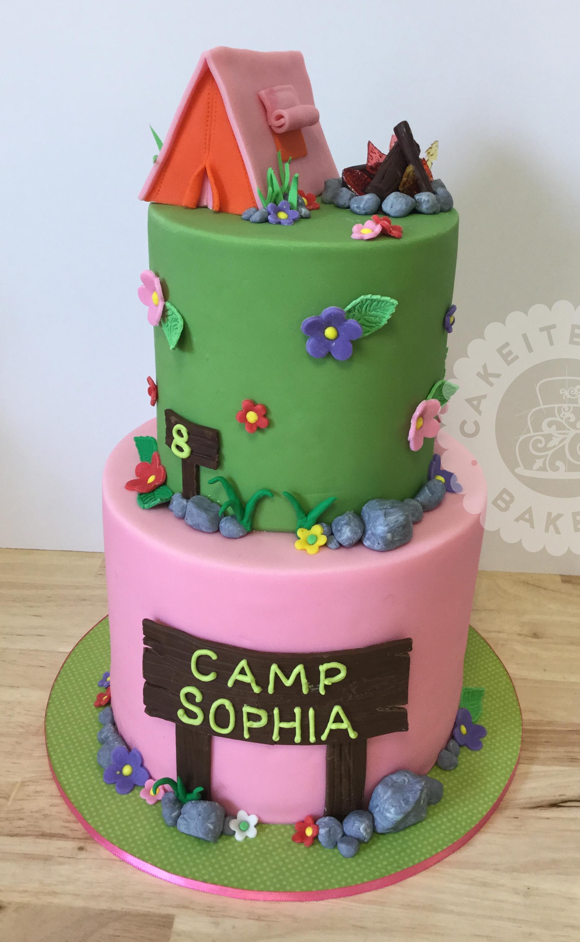 Cakeitecture Bakery 1716 campfire cake.jpg