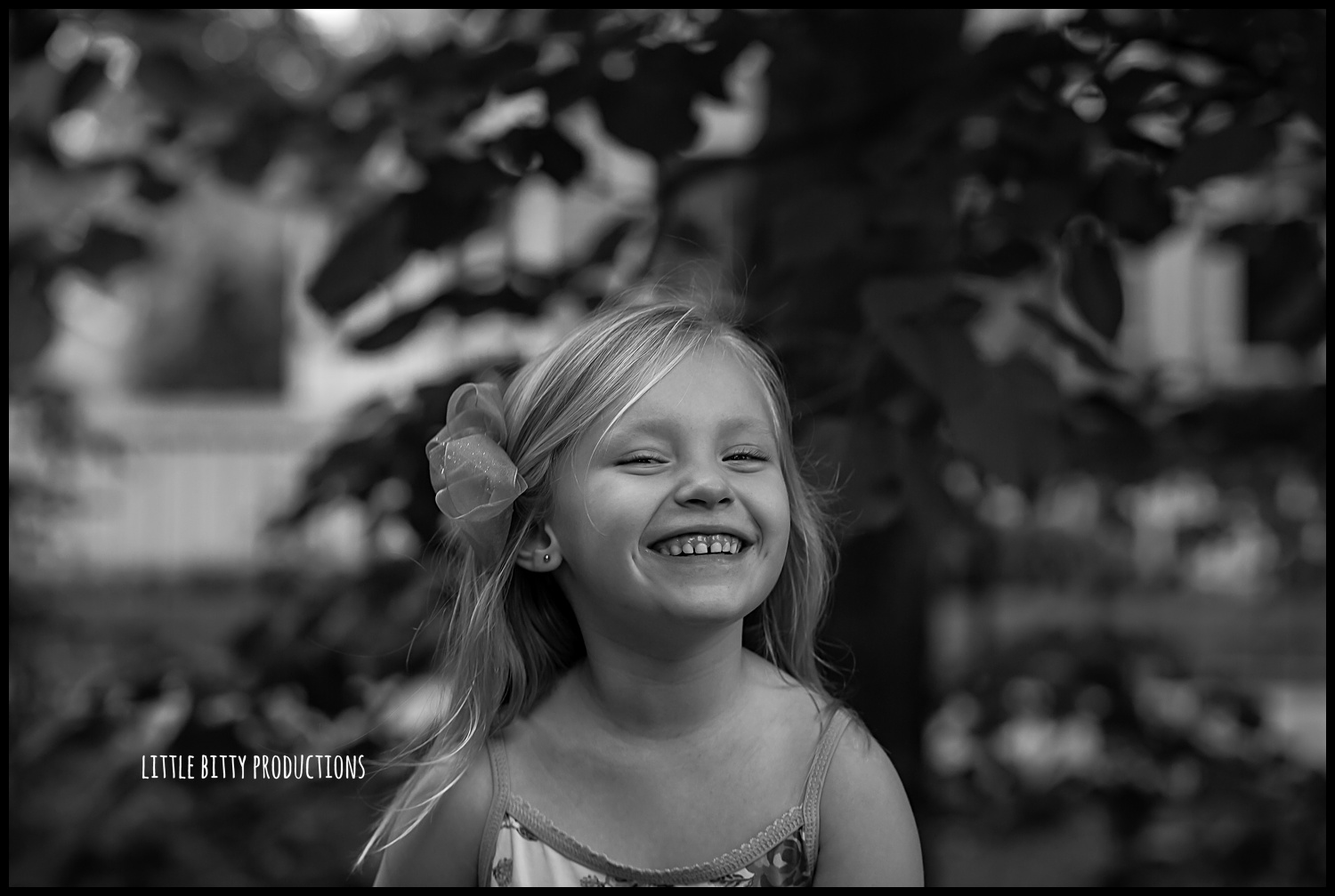oak park children's photographer